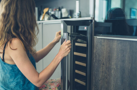 Hvilket vinkøleskab skal du vælge?